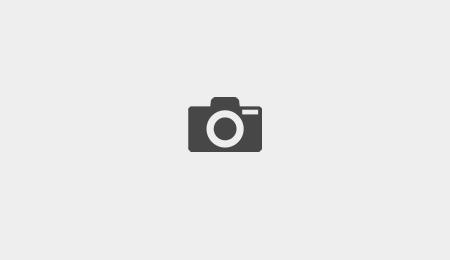 Modèle Azur maison contemporaine à toit plat vue côté jardin constructeur EUROMAISONS dans le Haut-Rhin
